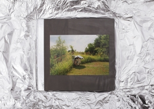 The-Canaries-Cover-foil-wrapping